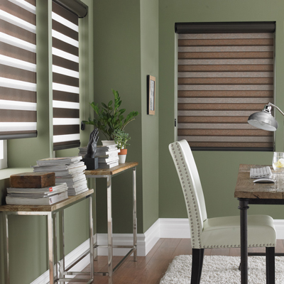 Ottawa Window Treatment - Roller 2